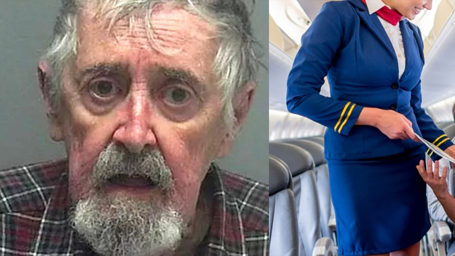 Gregory Alexander was arrested for his antics in the high skies at Southwest Florida International Airport.