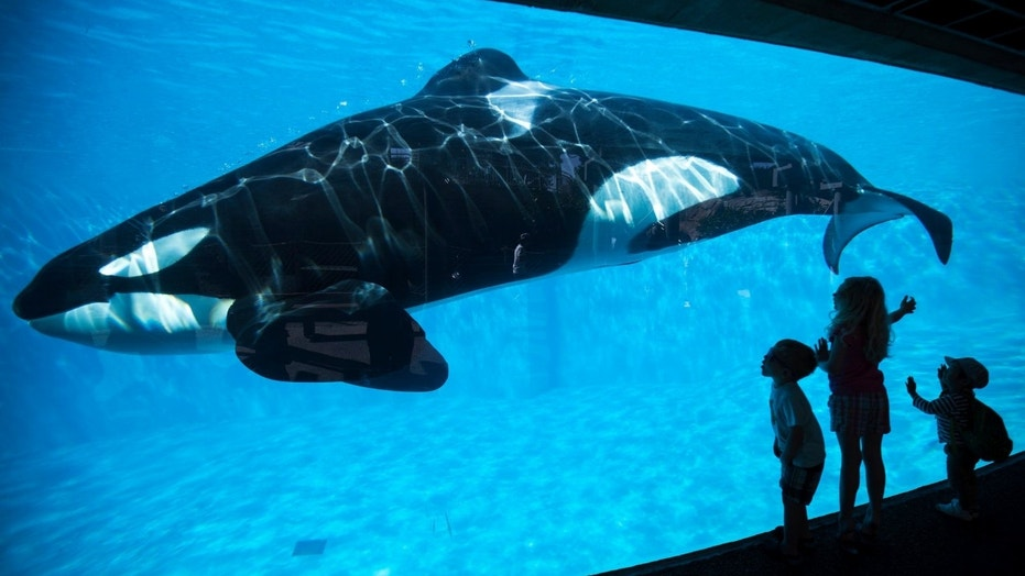 "SeaWorld Parks & Entertainment announced the ""milestone environmental achievement"" Friday."