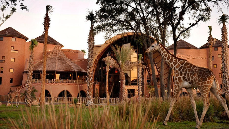 A man fell at Walt Disney World's Animal Kingdom Lodge the same day a 33-year-old cast member suffered a fatal accident.