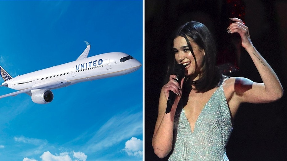 Pop singer Dua Lipa took to Twitter to call out United Airlines on how it handled her sister's peanut allergy.
