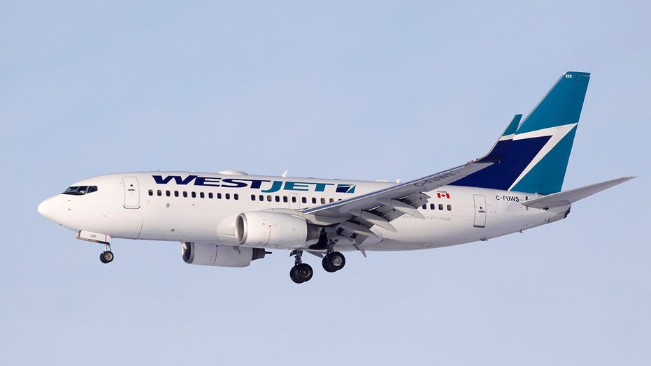 In a statement, WestJet said it had apologized to Ms. Herrem and offered a credit for the flight.