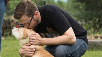 ADVANCE FOR WEEKEND EDITIONS, AUG. 4-5 - In this June 18, 2018 photo, Mike Liay kisses his dog Archie's head in his backyard in Minneapolis. Liay says that sometimes Archie has the energy to play, and other times he just wants to lounge in the backyard.  Archie has hepatic microvascular dysplasia, a congenital liver abnormality that affects blood flow in his liver and his digestion. There is no cure. He was given anywhere from six months to six years to live, and moved into the Secondhand Hounds hospice program. (Lacey Young/Minnesota Public Radio via AP)
