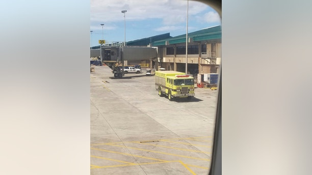 This Friday, Aug. 31, 2018 photo provided by Nicholas Andrade shows a fire truck outside a Hawaiian Airlines jet in Kahului, Hawaii, after a can of pepper spray went off inside the plane during a flight from Oakland, Calif. Twelve passengers and three flight attendants were treated for respiratory issues and released by emergency responders at the airport in Kahului, which is on the island of Maui. (Nicholas Andrade via AP)