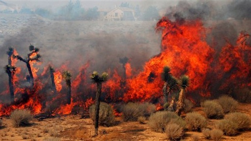 July 30, 2010: With houses seen in the background, flames from the Crown Fire burn plants as it races across the desert near Lake Elizabeth Road in Palmdale, Calif.