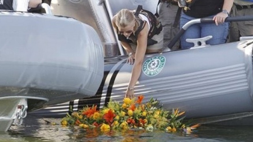 Oct. 6: Tiffany Hartley lays a wreath near the site where her husband, David Hartley, was shot on Falcon Lake (AP).