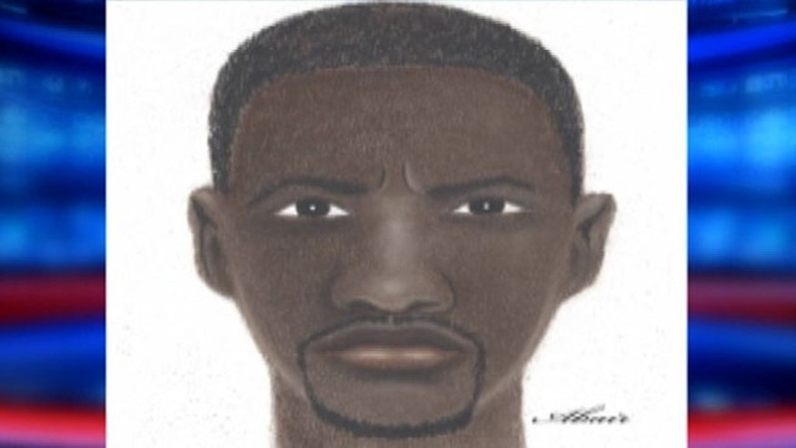 Artist's sketch of Detroit serial rapist.