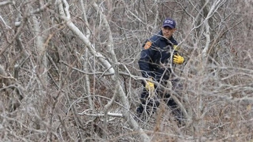 April 4: A policeman searches the thick brush on the side of the road near Oak Beach, N.Y. The number of victims of a suspected serial killer on New York's Long Island has doubled to eight in the past week following the discovery of three more corpses Monday (AP).