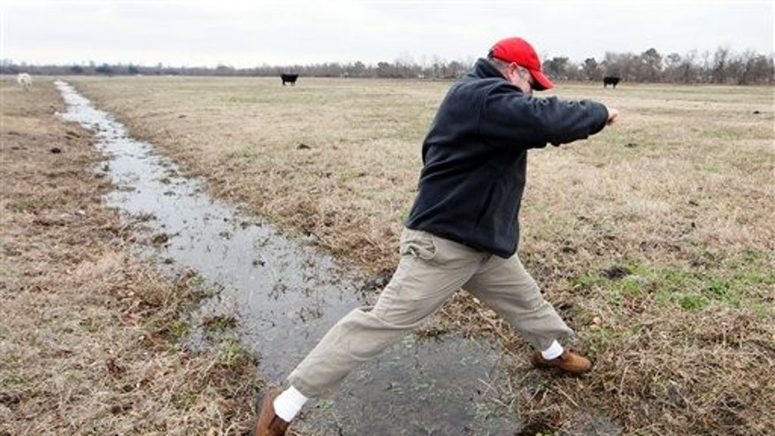 Feb. 10: Bill Haines with the Meraux Foudation hops over a ditch in a foundation-owned pasture in Meraux, La., where the Army Corps of Engineers is proposing it build a canal.