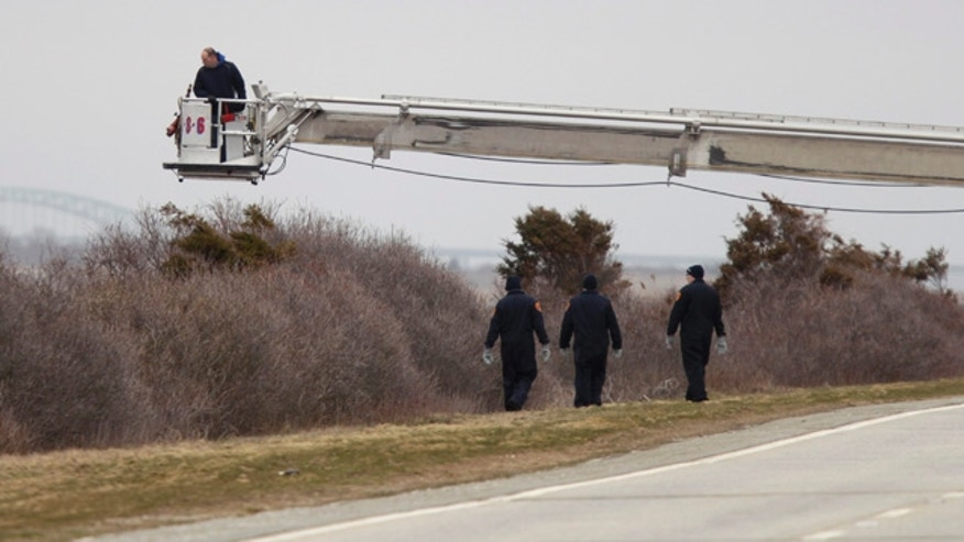 April 4, 2011: Police aided by a man in a fire department bucket ladder search in the brush near Oak Beach, N.Y. Three sets of human remains were found Monday, bringing to eight the total number of bodies found in the area since December.