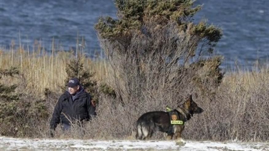 Police search in the brush by the side of the road on Cedar Beach, near Babylon, N.Y. , on Dec. 14, 2010 (AP).