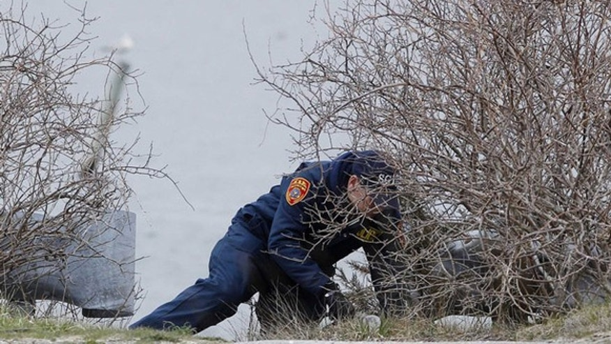 April 7, 2011: A member of the Suffolk County police search team looks through a brush area for the remains of more possible victims near the beach area of Oak Beach, New York.