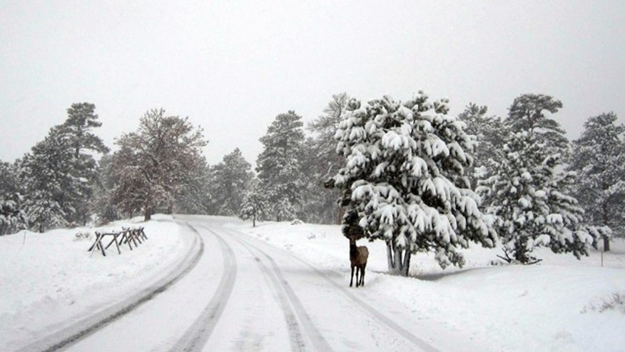 Oct. 26, 2011: A snowstorm moved in to the Colorado's Rocky Mountain National Park on Tuesday night, dumping 12 to 16 inches of snow.
