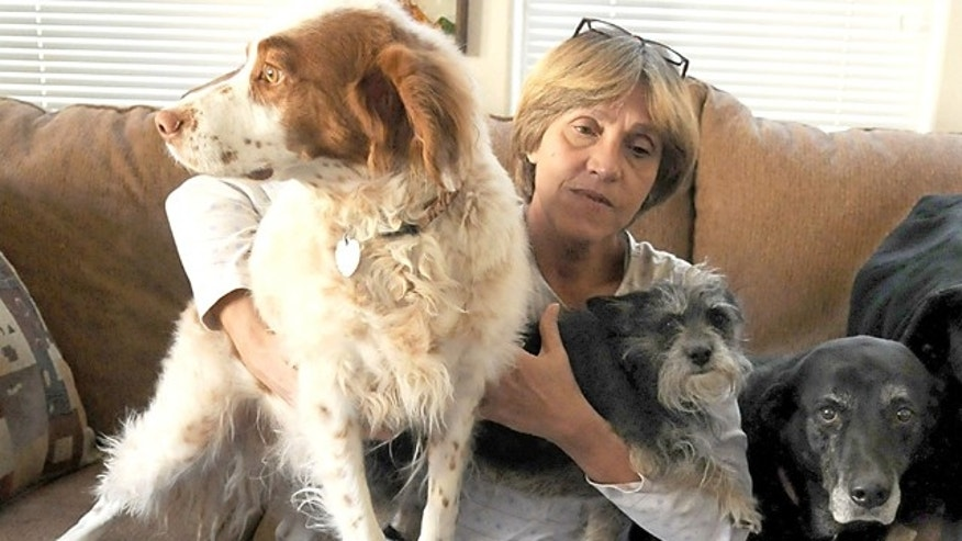 Dec. 1, 2011: Lynn Jones sits with her three dogs, from left, Junior, Manny and Jewel, at her Lockwood, Nev. home.