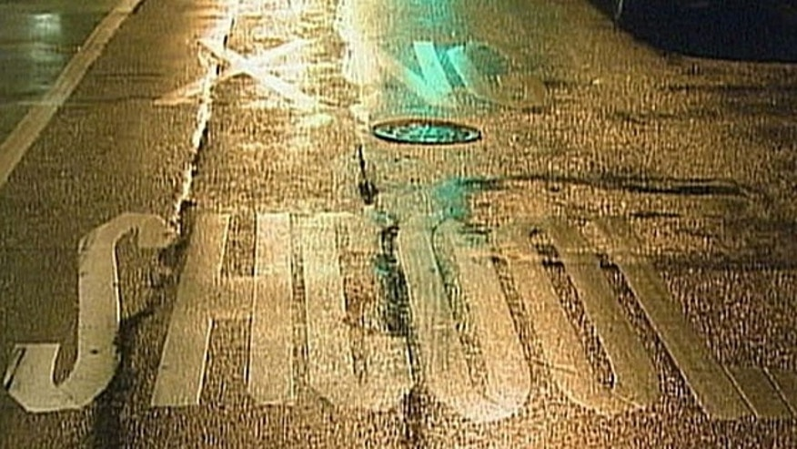"The word school was misspelled as ""shcool"" on Stanton Street in front of Marta Valle High School. The error was made sometime last summer, MyFoxNY.com reports."