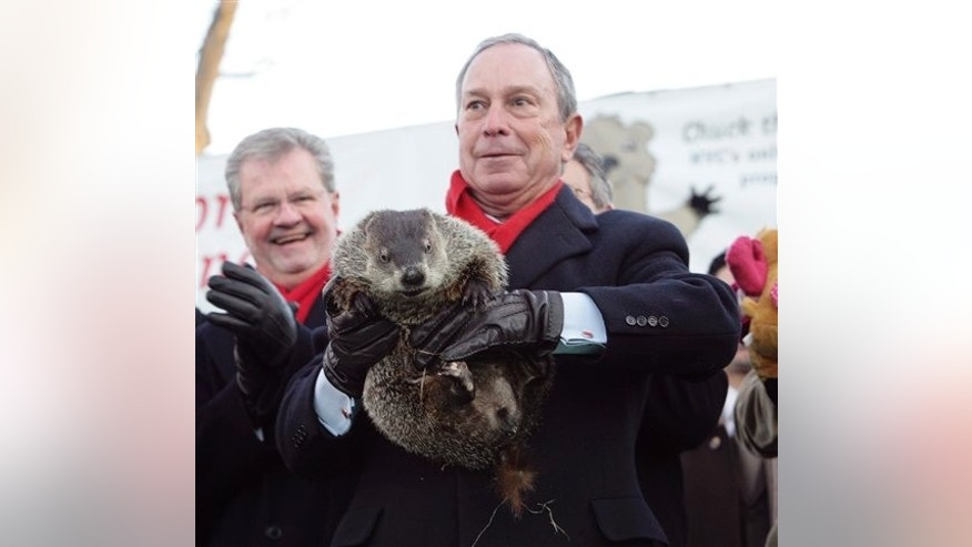 Feb. 2, 2009: New York Mayor Michael Bloomberg holds the city's prognosticating rodent, Charles G. Hogg, also known as Staten Island Chuck, at the Staten Island Zoo during Groudhog Day festivities in New York. The  bit through Bloomberg's glove and chomped on his left index finger when the mayor was trying to coax the animal into view with an ear of corn.