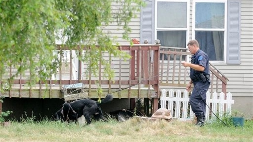 A Michigan State Police dog handler and his dog search the property at 7340 East Tomah Road in Mount Pleasant, Mich. on Thursday, June 28 2012, where the body of Carnel Chamberlain was reportedly found sometime earlier in the day. Chamberlain, 4 was reported missing on Thursday, June 21 from the home and a massive search and rescue effort was in place in the area in the week that followed. (AP Photo/The Morning Sun, Lisa Yanick-Jonaitis)