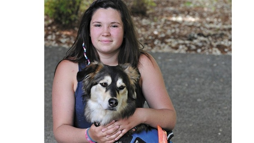 """May 15, 2012: In this photo, Jordan Biggs poses for a photo with the service dog she calls """"Bear"""" in Corvallis, Ore. A Portland, Ore., man said a 45-pound dog that leaped the fence of his house last year and vanished is named """"Chase."""""""
