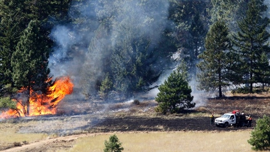 Aug. 15, 2012: Firefighters stand in view of a tree on fire, near Cle Elum, Wash. Crews fighting the large blaze in central Washington hope to increase containment levels by Wednesday evening, but are keeping a wary eye on weather conditions later in the week.