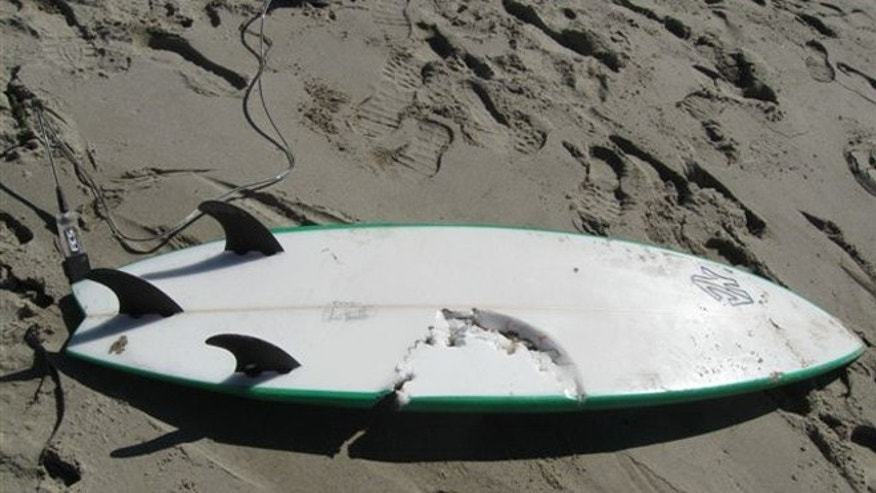 This photo shows Francisco Solorio Jr.'s surfboard.