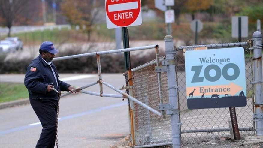 Nov. 4, 2012: A security guard closes the gate at the Pittsburgh Zoo, where zoo officials say a young boy was killed after he fell into the exhibit that was home to a pack of African painted dogs.