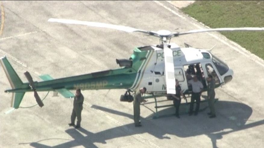 A Miami-Dade police helicopter, above, was forced to make an emergency landing after colliding with a large bird.