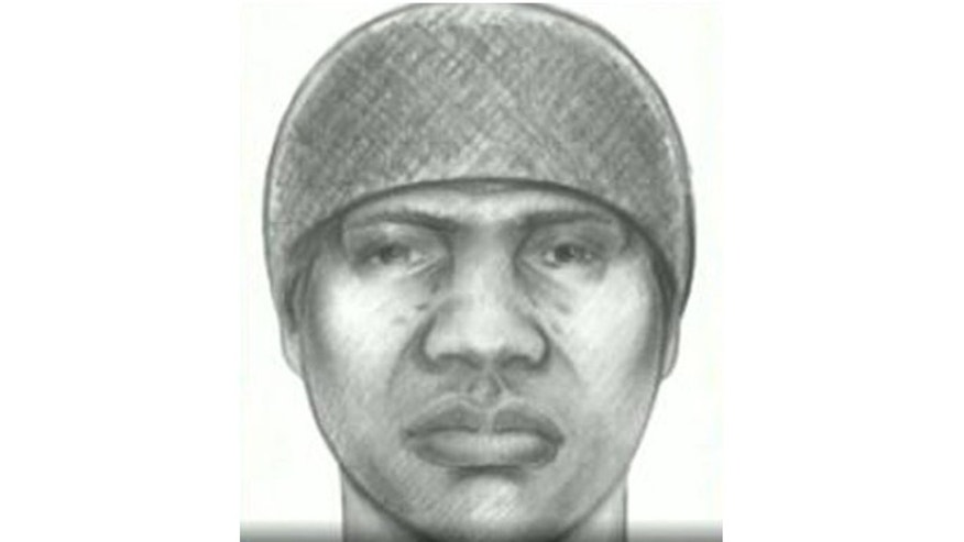 The NYPD released this sketch Tuesday of an alleged rapist.