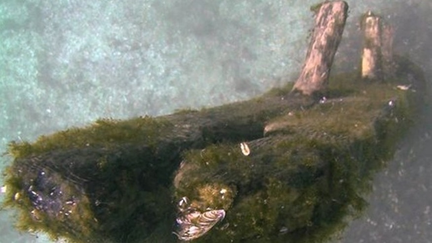 October 2012: This image from video provided by David J. Ruck shows timbers that were discovered by Steve Libert, head of Great Lakes Exploration Group, in 2001 protrude from the bottom of Lake Michigan.