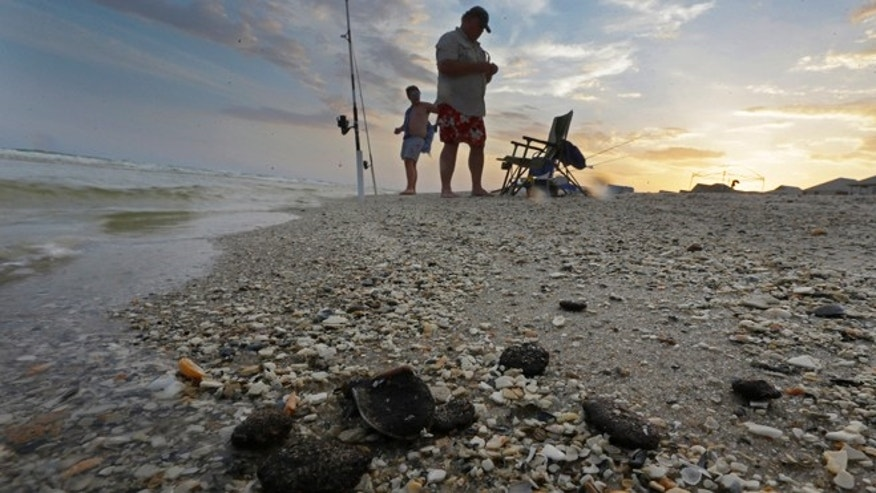 June 11, 2013: In this photo, tar balls lie mixed with shells on the beach in Gulf Shores, Ala. After three years and $14 billion worth of work following the BP oil spill in the Gulf of Mexico, the petroleum giant and the Coast Guard say it's time to end extraordinary cleanup operations in Alabama, Florida and Mississippi.