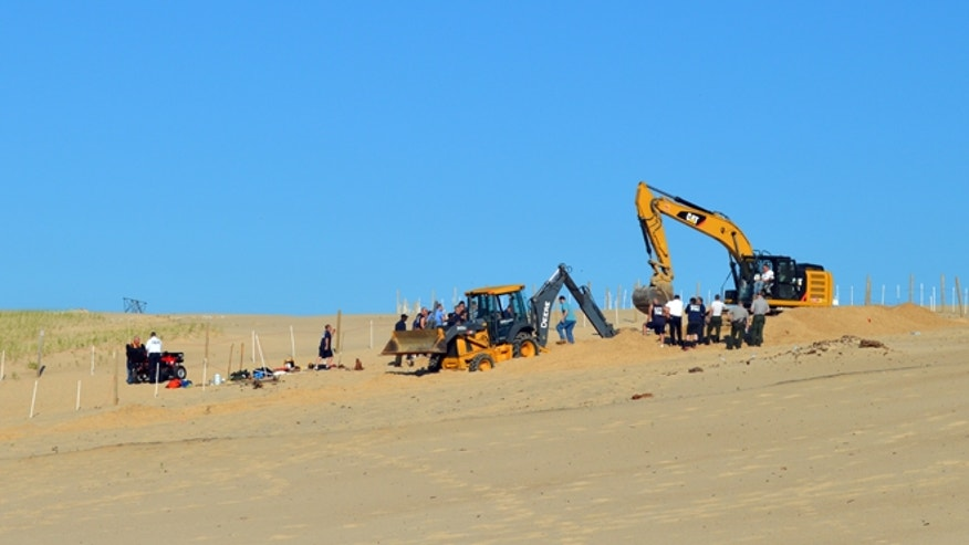 June 12, 2013: In this photo Michigan City firefighters, police, and first responders dig through a sand dune at Mount Baldy near Michigan City, Ind., while searching for a missing 6-year-old-boy who fell into a hole.