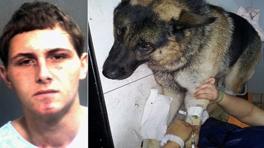 Police say Landon Bradley Barnes, 18, was booked on charges of injuring a police dog, among others.