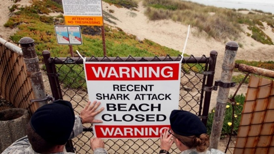FILE: Oct. 22, 2010: A sign warning surfers of a recent shark attack is posted at Vandenberg Air Force Base in California,