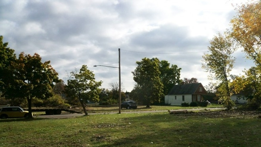 A vacant lot in the east end of Detroit cleared of debris and ready for tree planting.