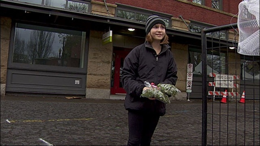 Madison Root, 11, holding some of the mistletoe she was told not to sell. (Courtesy KATU)