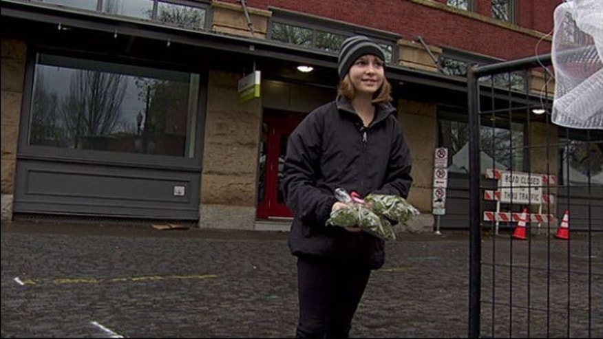 Madison Root, 11, holding some of the mistletoe she was told not to sell.