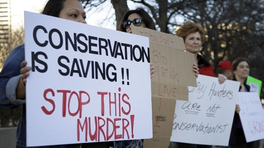 January 11, 2014: Veronica Rodriguez, left, of Garland Texas, stands with nearly 40 others protesting outside the Dallas Safari Club's weekend show and auction in Dallas. (AP Photo)