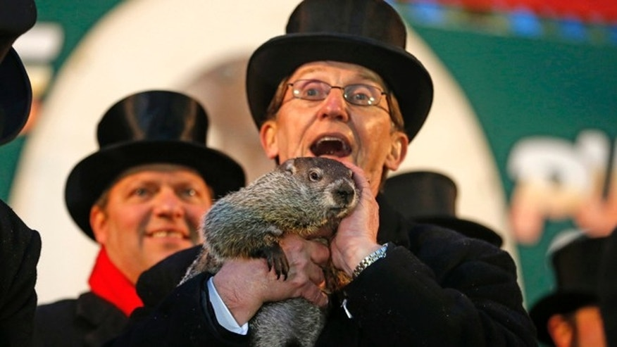 Feb. 2, 2014: Punxsutawney Phil is held by Ron Ploucha after emerging from his burrow Sunday on Gobblers Knob in Punxsutawney, Pa., to see his shadow and forecast six more weeks of winter weather.