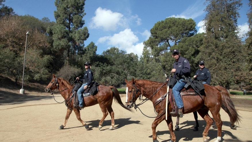 Los Angeles Police officers search on horseback the Griffith Park area of Los Angeles for murder suspect Oscar Bridges on Tuesday, Feb 4, 2014. Sheriff's deputies assisted by Los Angeles Police Dept. are searching the hills around the Hollywood Bowl for the suspect in the killing of a Texas man found dead in a motel room nearly two weeks ago.   (AP Photo/Nick Ut)