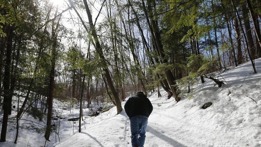Randy Patten walks along a path in a ravine on Wednesday, Feb. 26, 2014, in Lake George, N.Y. In the 1990s, businessman Anthony Tomasovic was granted permission to fill in his vacant, sloping property bordering the ravine where British Colonial troops and their Mohawk Indian allies were ambushed by a larger force of French and Indians in 1755. The land borders the wooded ravine where about 1,000 British Colonial troops and 200 of their Mohawk Indian allies were ambushed by a larger force of French and Indians on the morning of Sept. 8, 1755.  Patten is convinced many of the scores of casualties from the ambush were buried afterward in the ravine. (AP Photo/Mike Groll)