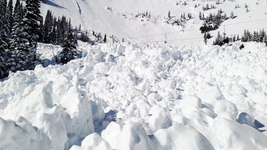 In this photo provided by Crystal Mountain Resort, snow from a 30-foot deep avalanche that wiped out a chairlift a day earlier remains behind Tuesday, March 11, 2014, at Crystal Mountain, Wash. The avalanche that was intentionally triggered by the Ski Patrol brought down more snow than expected and wiped out a chairlift at the resort near Mount Rainier. No one was injured. Members of the Ski Patrol threw a 40-pound explosive on unstable snow as a safety precaution on the slope at 4:45 p.m. Monday after the resort had closed, but snow hit the High Campbell chairlift, the highest of 10 chairlifts at the resort on the northeast corner of Mount Rainier National Park. (AP Photo/Crystal Mountain Resort)