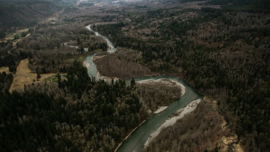 An aerial view of the Stillaguamish River leading up to the landslide, above, that shows a huge volume of earth missing from the side of a hill, along State Route 530 between the cities of Arlington and Darrington, on Saturday, March 22, 2014. (AP Photo/ The Seattle Times, Marcus Yam) MANDATORY CREDIT TO BOTH THE SEATTLE TIMES AND THE PHOTOGRAPHER