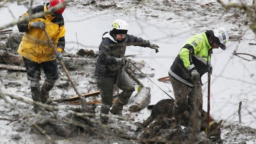 March 30, 2014: Search and rescue teams navigate the wet, muddy terrain at the west side of the mudslide on Highway 530 near mile marker 37 in Arlington, Wash. Periods of rain and wind have hampered efforts the past two days, with some rain showers continuing today.