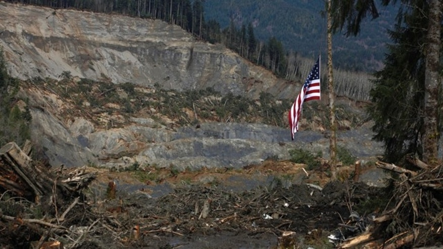 March 31, 2014: An American flag hangs from the only cedar post left standing at the scene of a deadly mudslide in Oso, Wash. (AP Photo/The Herald, Sofia Jaramillo, Pool)