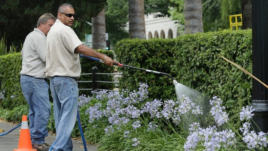 Groundskeeper Sanjay Ram, right,of the Department of General Services,  waters  plants lining the sidewalk around the state Capitol  Tuesday, July 8, 2014, in Sacramento, Calif.  State water regulators are considering fines up to $500 for excessive water use for things like irrigating lawns and car washing due to the state's severe drought.  State officials say  conservation efforts so far aren't producing enough results. (AP Photo/Rich Pedroncelli)