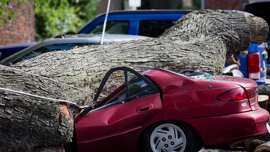 A downed tree lies atop a crushed car Wednesday, July 9, 2014, in Philadelphia. About 228,000 homes and businesses across Pennsylvania remain without power after severe thunderstorms raced across the state. (AP Photo/Matt Rourke)
