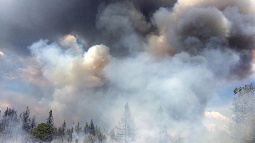 "In this Sunday July 13, 2014, photo released by the Oregon Dept. of Forestry, the Moccasin Hill fire burns north of Sprague River and northeast of Klamath Falls, Ore.  Lightning struck Oregon more than 6,000 times Sunday and Monday, touching off small fires by the dozens. Such a barrage can be expected to cause numerous ""sleeper"" or holdover fires in coming days. (AP Photo/Oregon Dept. of Forestry, Dennis Lee)"