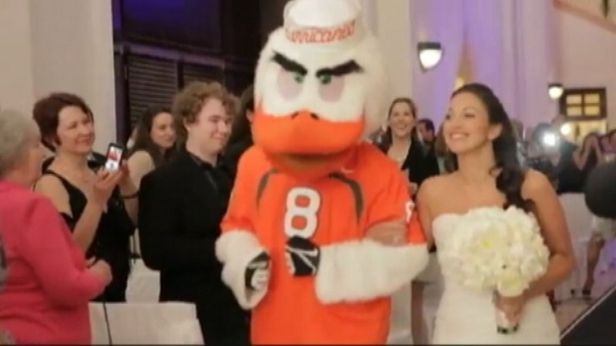 This photo shows University of Miami mascot Sebastian the Ibis walking Jennifer Urs-Sullivan down the aisle on her wedding day.