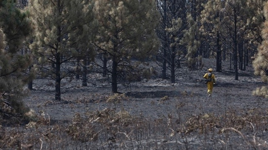 July 28, 2014: A Cal Fire crew member looks for hot spots in ground burned by the of the Sand Fire in the rugged foothills of El Dorado county near Plymouth, Calif. (AP Photo/Steve Yeater)