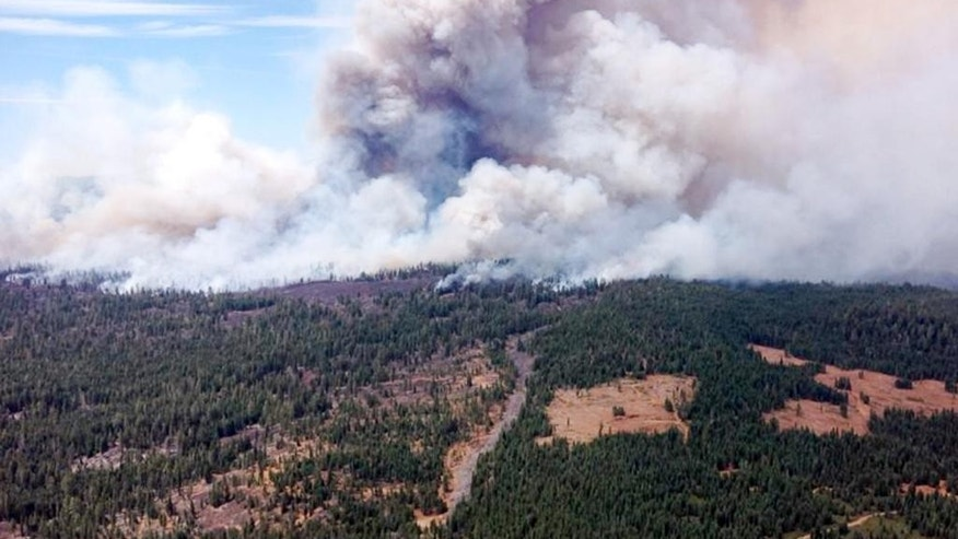 This Aug. 1, 2014 photo provided by the U.S. Forest Service shows the  Eiler Fire burning Old Station, California. The Eiler Fire near Old Station has consumed nearly 23,000 acres and destroyed eight homes in the process, according to fire officials, Sunday Aug. 3, 2014. (AP Photo/U.S. Forest Service)
