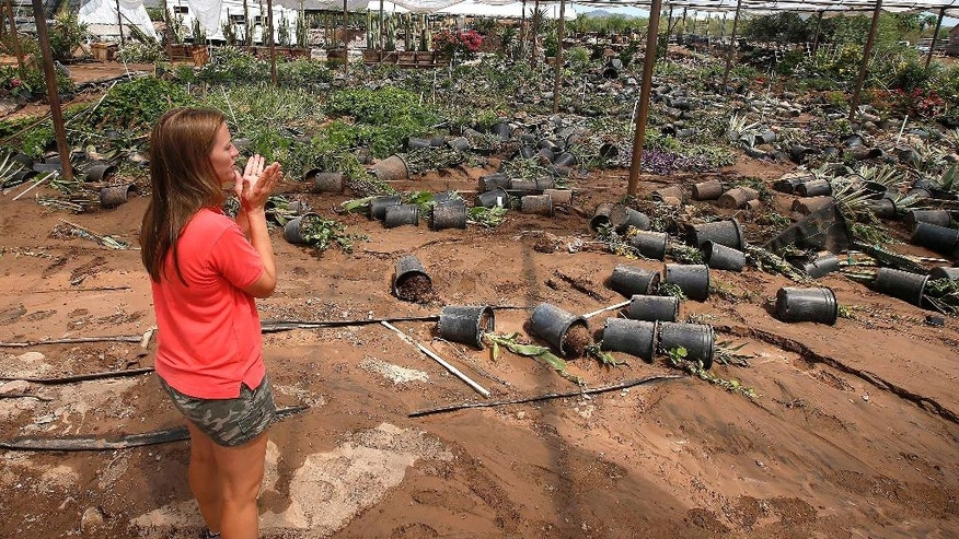 Jessica Cox, co-owner of Cox Cactus Farm, covers her face with her hands as she surveys the damage left at her nursery after nearby Skunk Creek flooded out after strong storms moved through wiping out $1.5 to $2 million their entire inventory, Wednesday, Aug. 20, 2014, in Phoenix. (AP Photo/Ross D. Franklin)