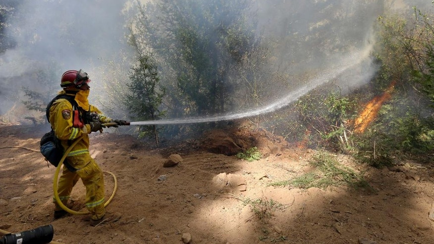 A firefighter hoses down a tree being consumed by flames from the King fire near Fresh Pond, Calif., Wednesday, Sept. 17, 2014. The blaze that started Sunday has consumed more than 18,000 acres and is only 5 percent contained.(AP Photo/Rich Pedroncelli)